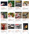 search dangong at taobao.com